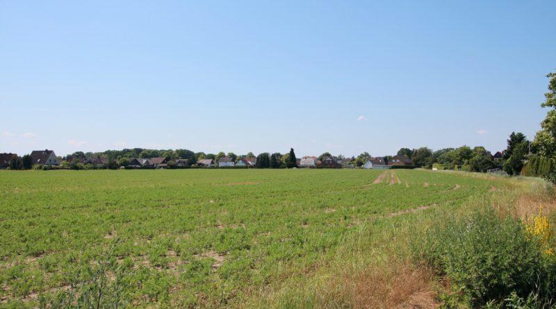 Baugebiet Holzplatz